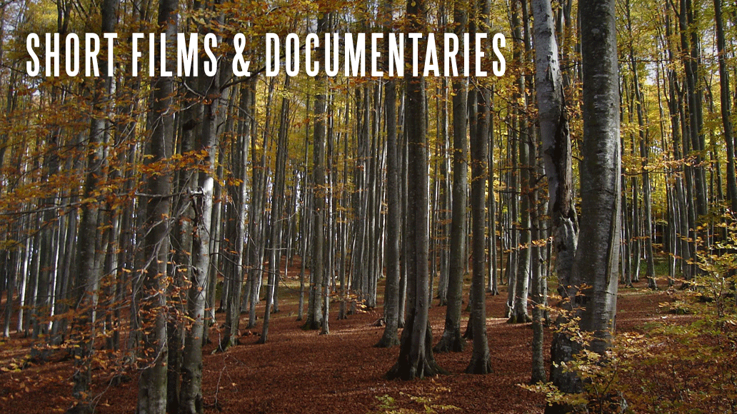 Short Films & Documentaries